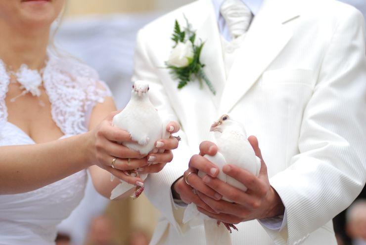 Видео запуск голубей на свадьбе фото 41-289